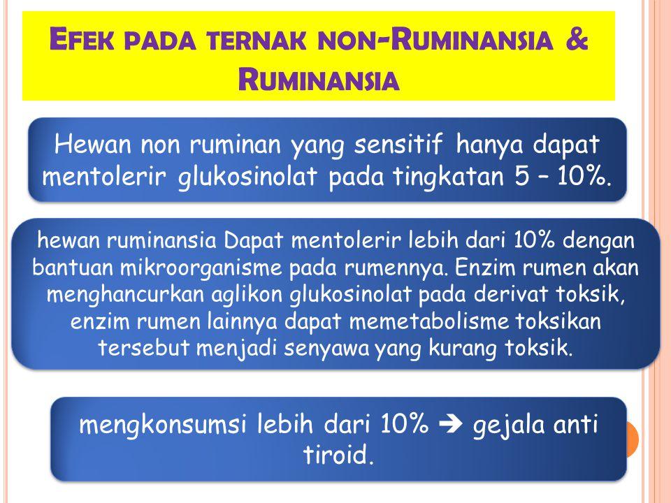 Efek pada ternak non-Ruminansia & Ruminansia