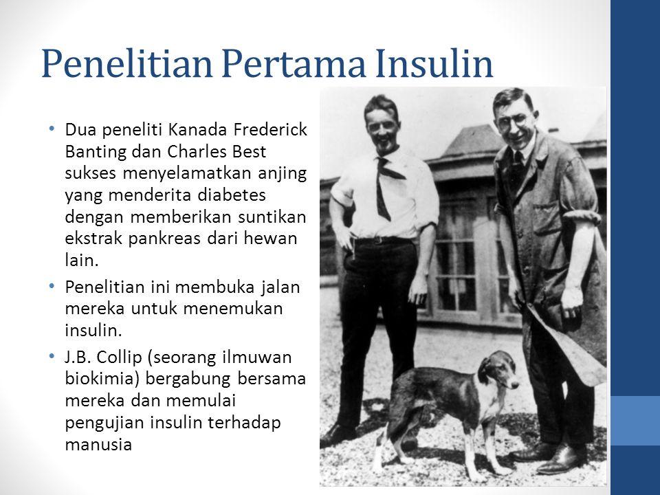 Penelitian Pertama Insulin