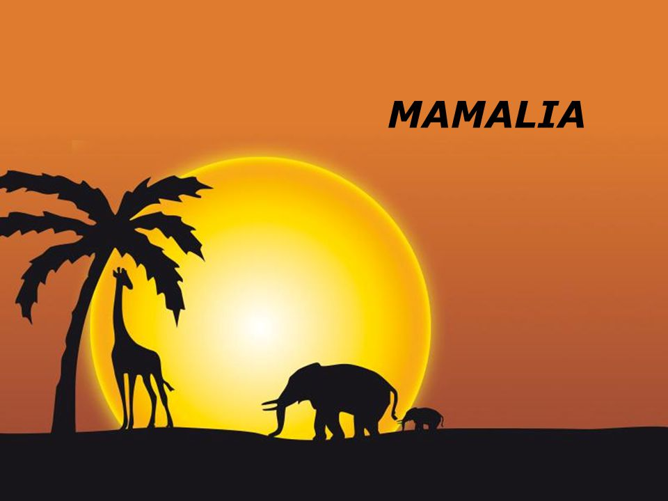 MAMALIA