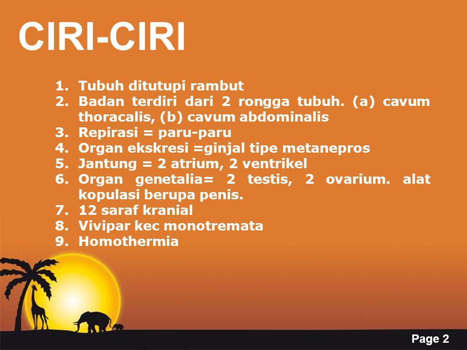CIRI-CIRI Tubuh ditutupi rambut