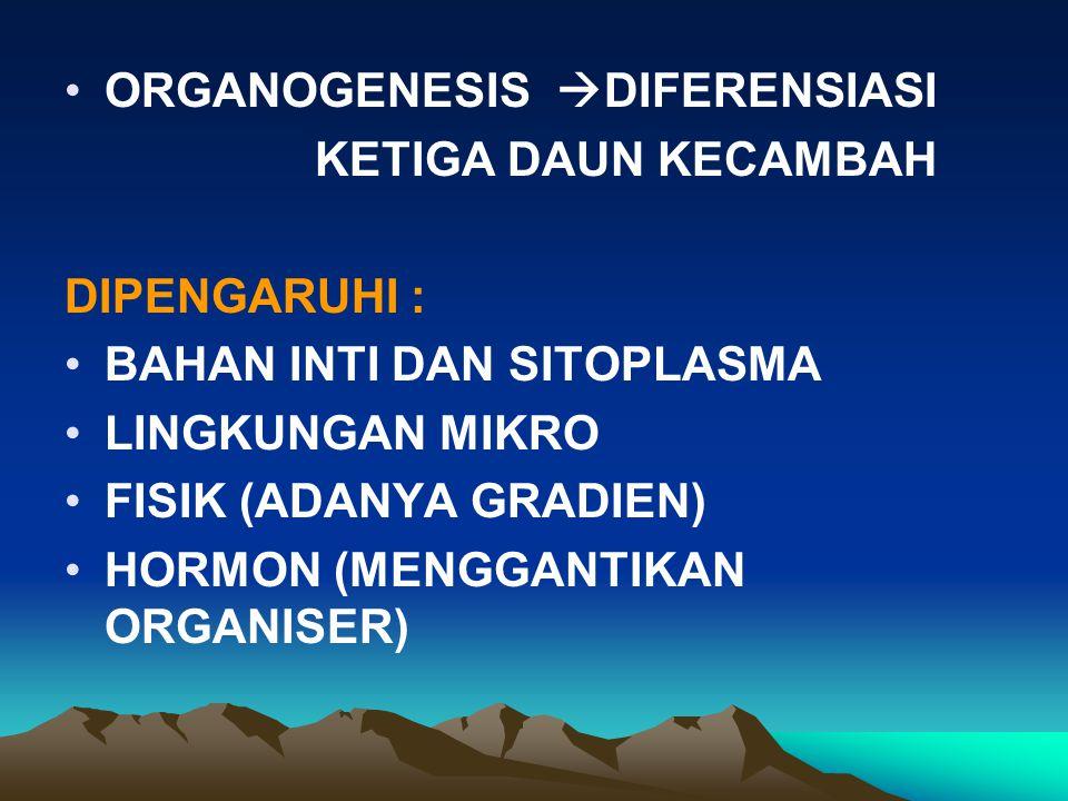 ORGANOGENESIS DIFERENSIASI