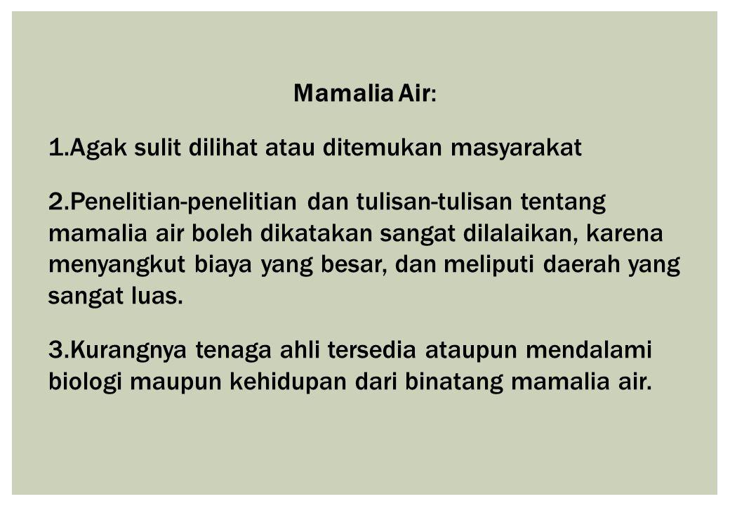 Mamalia Air: Agak sulit dilihat atau ditemukan masyarakat.