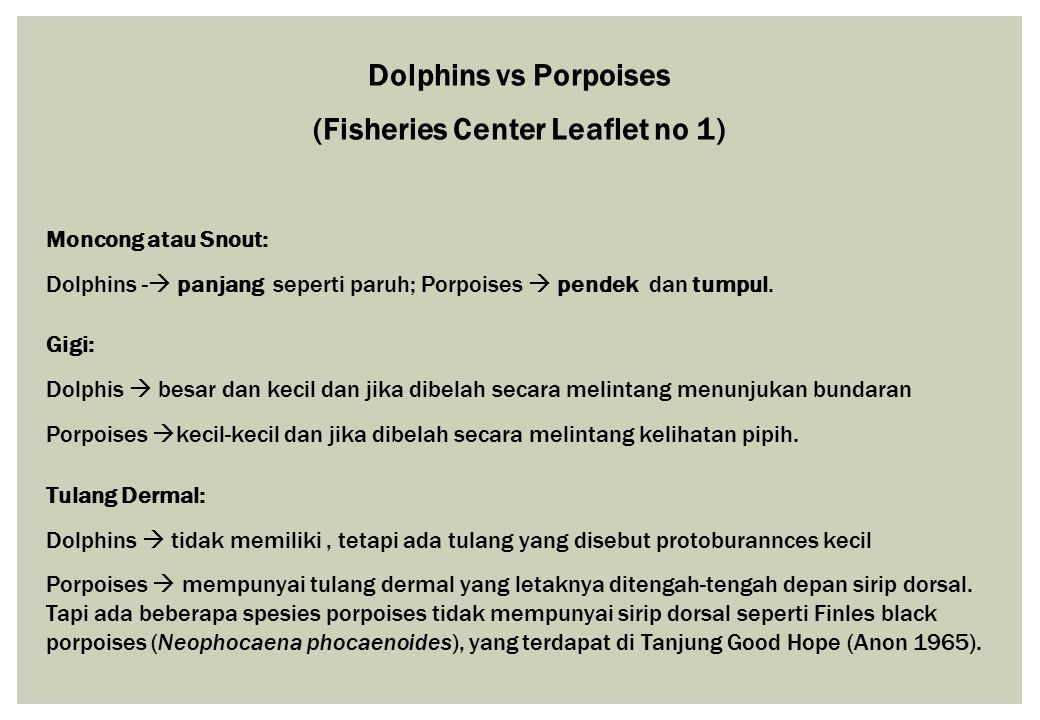(Fisheries Center Leaflet no 1)
