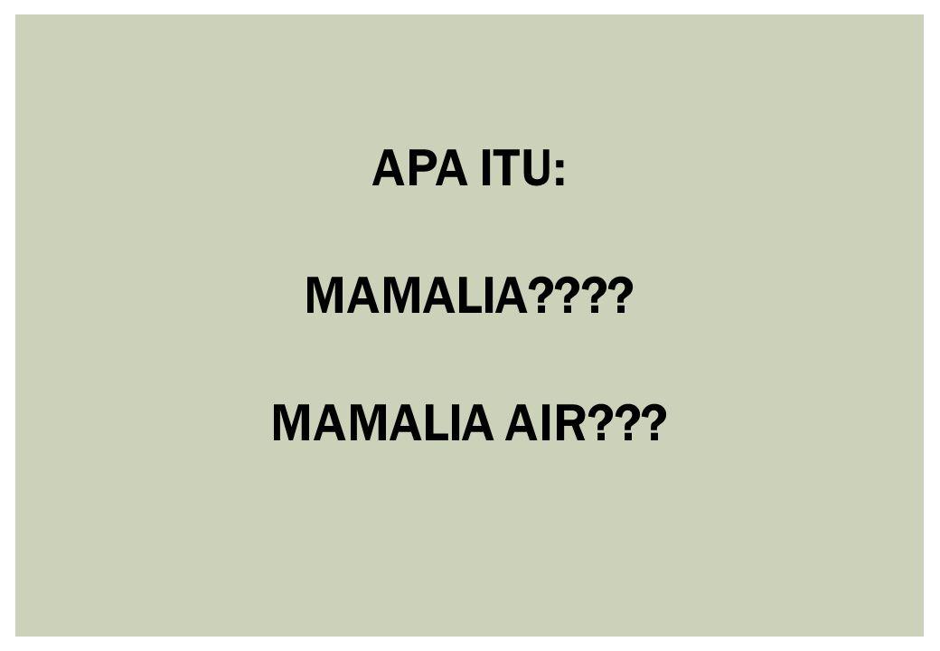 APA ITU: MAMALIA MAMALIA AIR