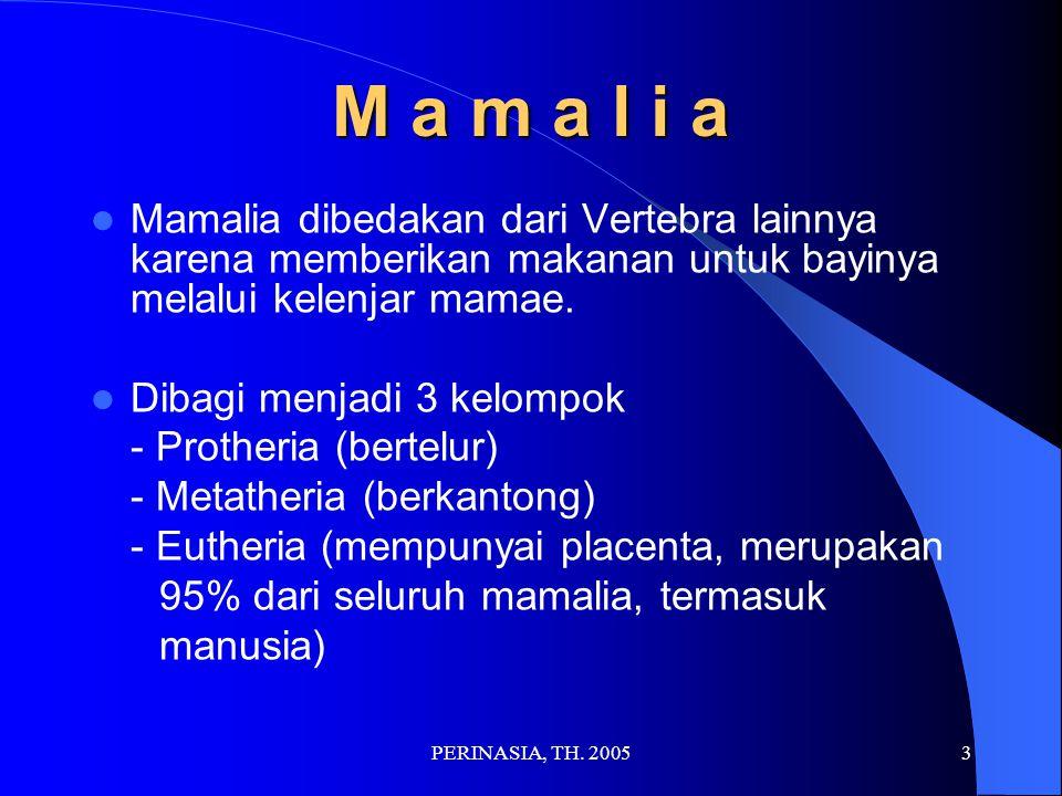 M a m a l i a Mamalia dibedakan dari Vertebra lainnya karena memberikan makanan untuk bayinya melalui kelenjar mamae.