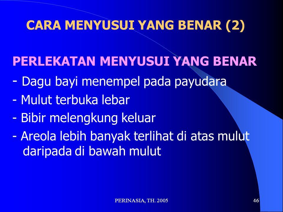 CARA MENYUSUI YANG BENAR (2)