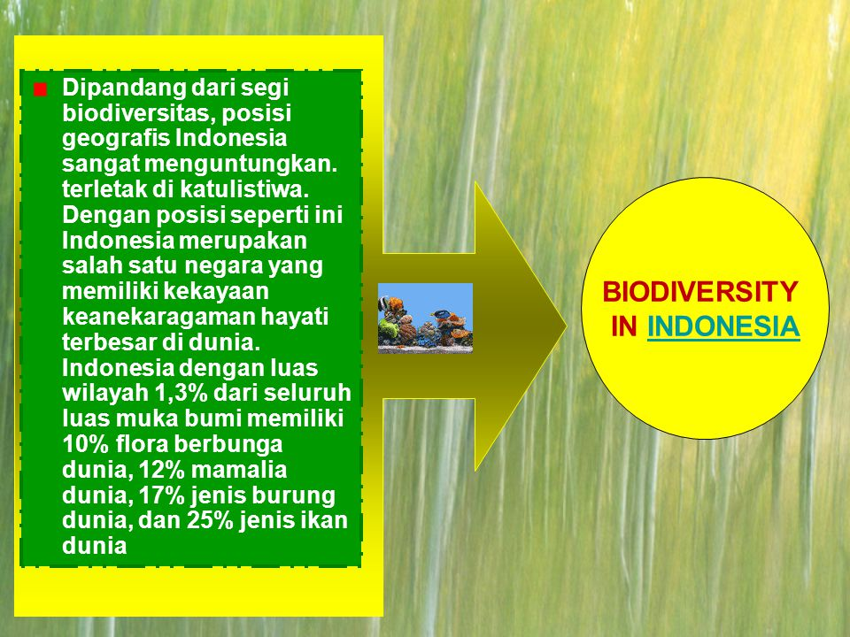 BIODIVERSITY IN INDONESIA