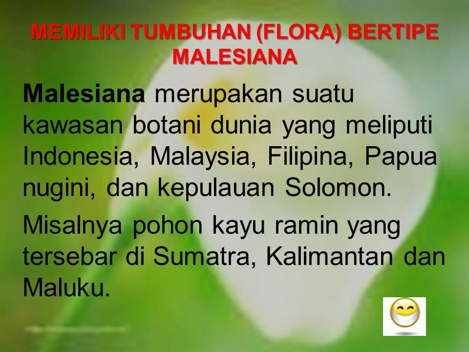 MEMILIKI TUMBUHAN (FLORA) BERTIPE MALESIANA