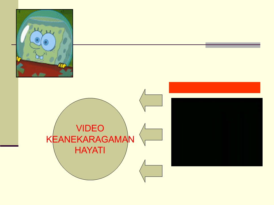 VIDEO KEANEKARAGAMAN HAYATI 21