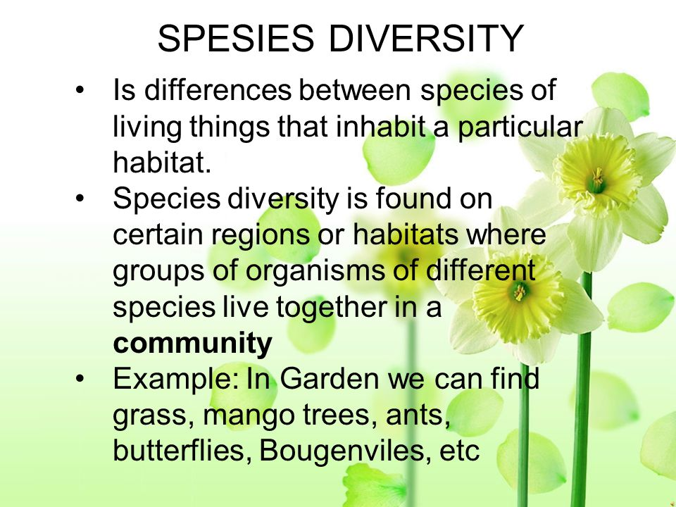 SPESIES DIVERSITY Is differences between species of living things that inhabit a particular habitat.