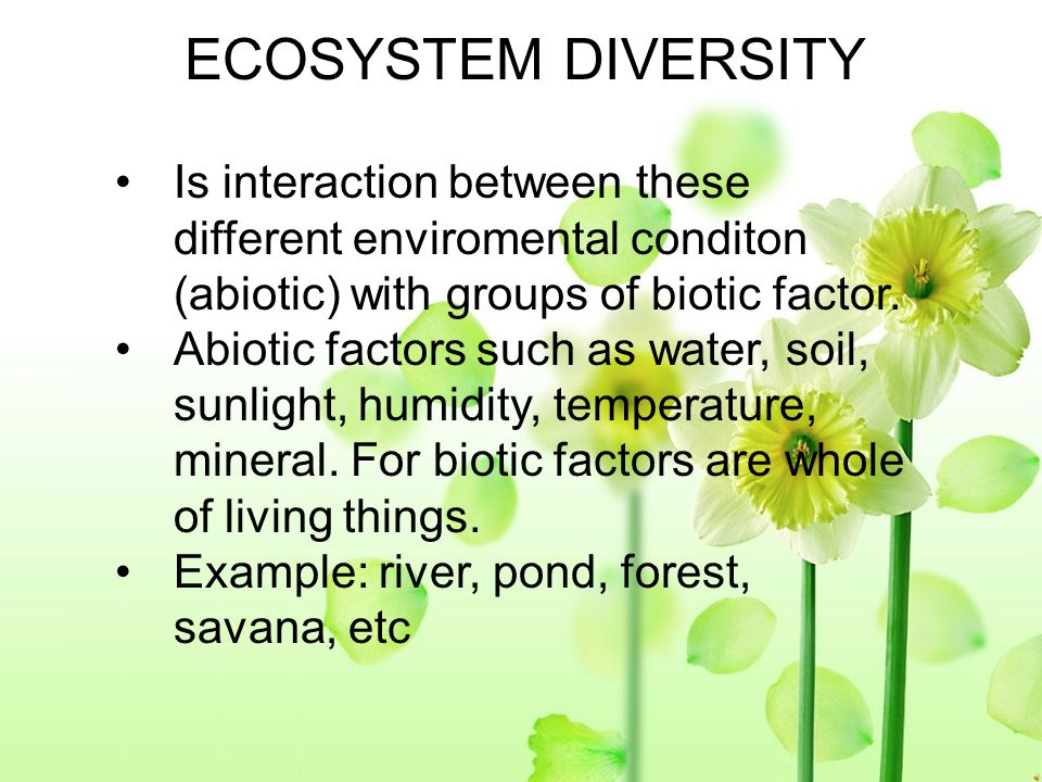 ECOSYSTEM DIVERSITY Is interaction between these different enviromental conditon (abiotic) with groups of biotic factor.