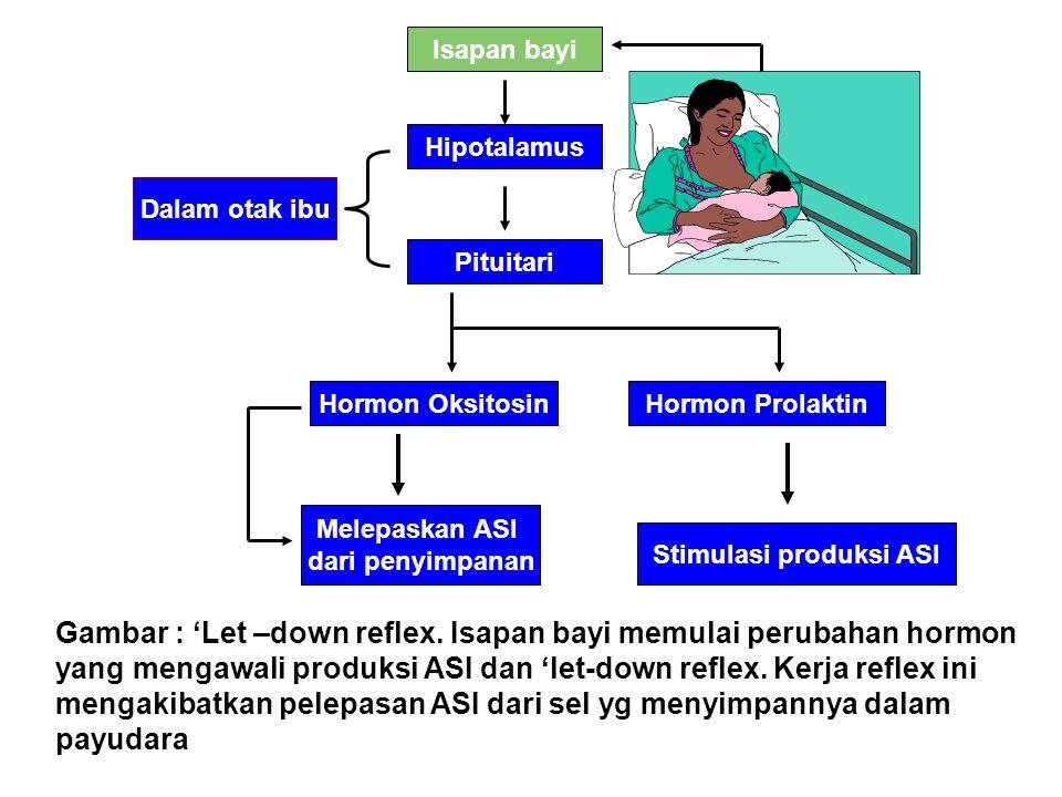 Stimulasi produksi ASI