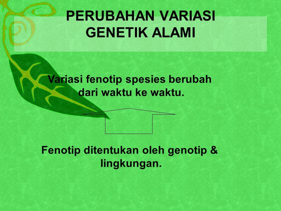 PERUBAHAN VARIASI GENETIK ALAMI