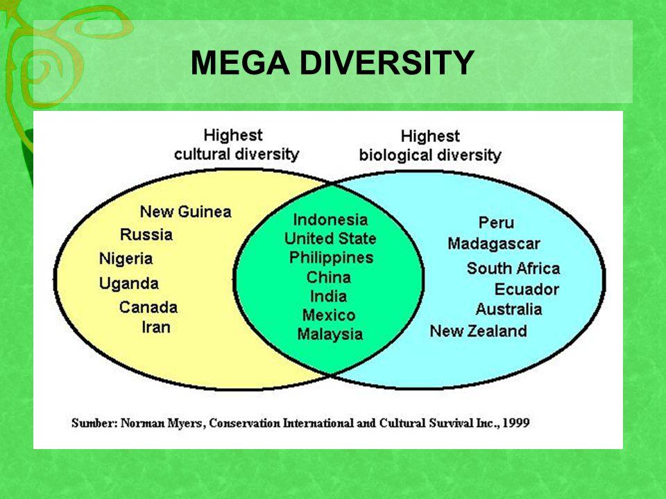 MEGA DIVERSITY
