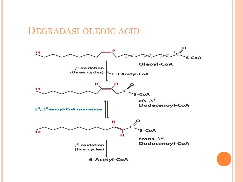 Degradasi oleoic acid