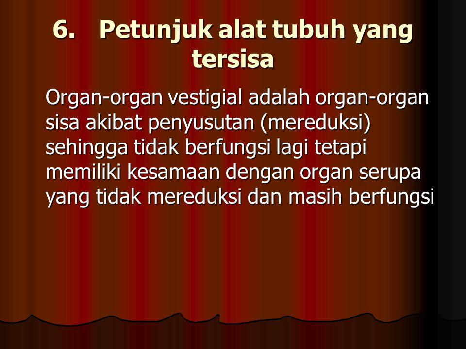 6. Petunjuk alat tubuh yang tersisa