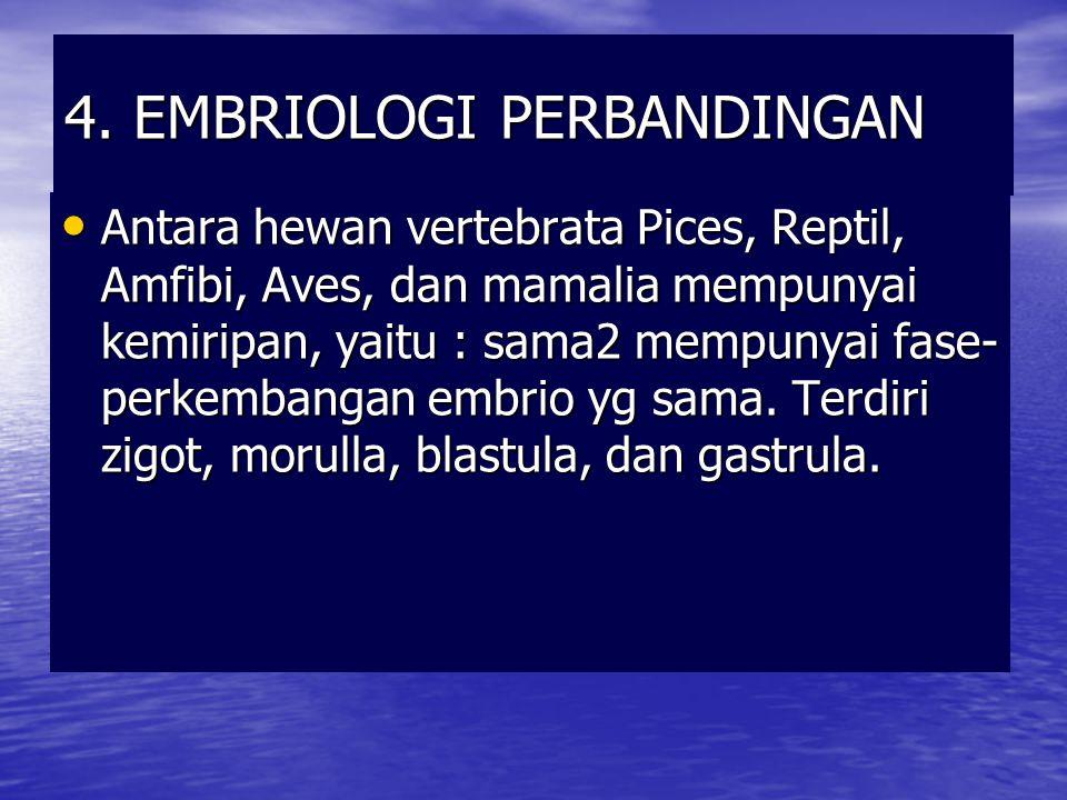4. EMBRIOLOGI PERBANDINGAN