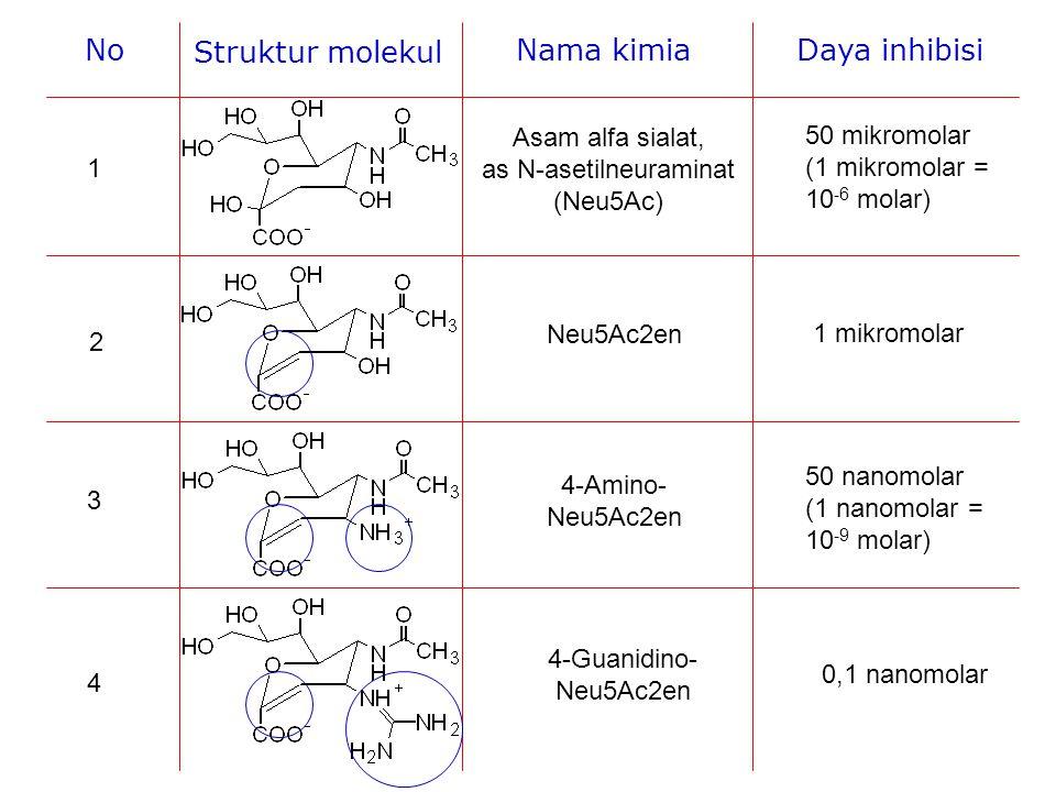 Asam alfa sialat, as N-asetilneuraminat (Neu5Ac)