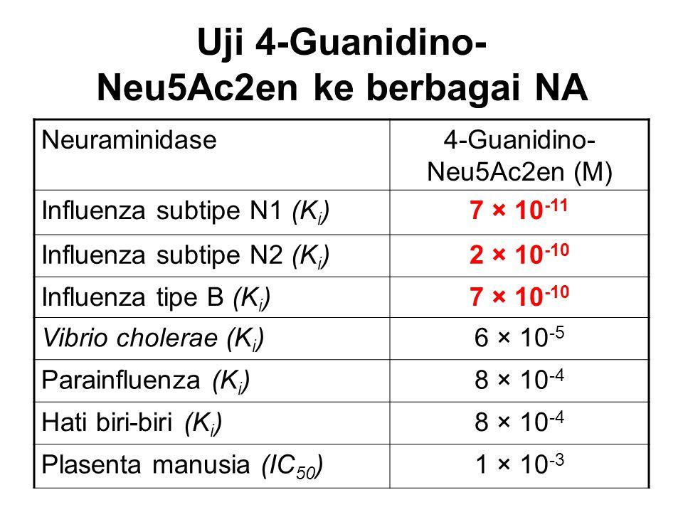Uji 4-Guanidino- Neu5Ac2en ke berbagai NA
