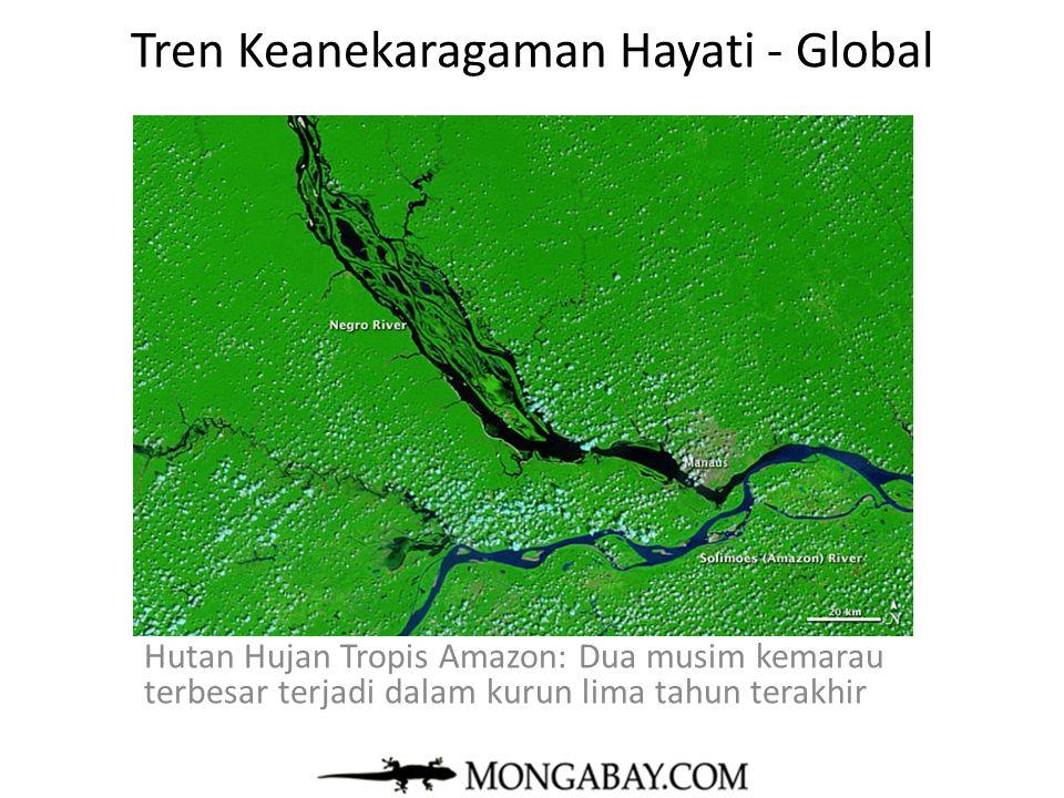 Tren Keanekaragaman Hayati - Global