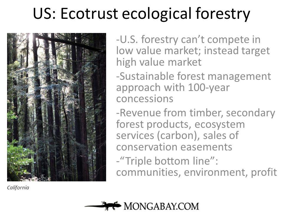 US: Ecotrust ecological forestry