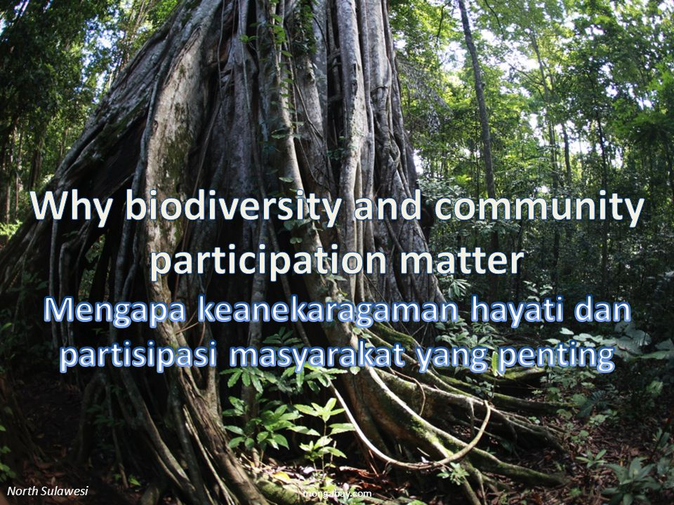 Why biodiversity and community participation matter
