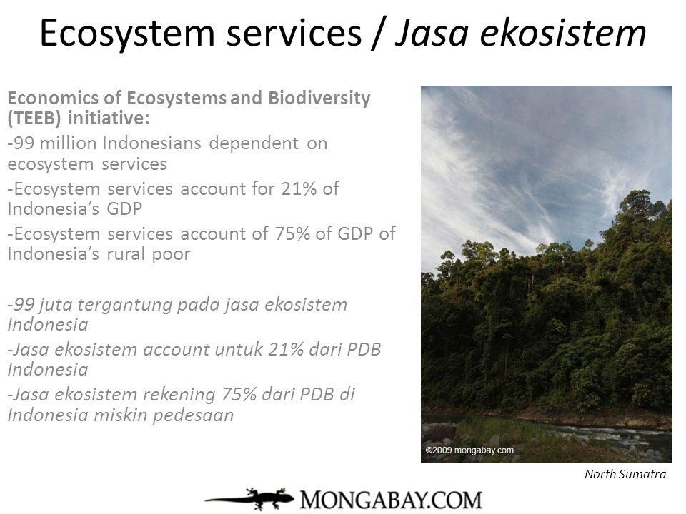 Ecosystem services / Jasa ekosistem