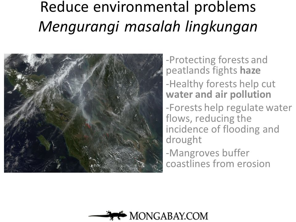 Reduce environmental problems Mengurangi masalah lingkungan