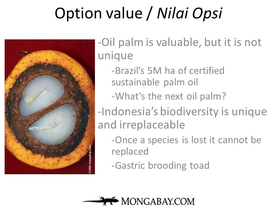 Option value / Nilai Opsi