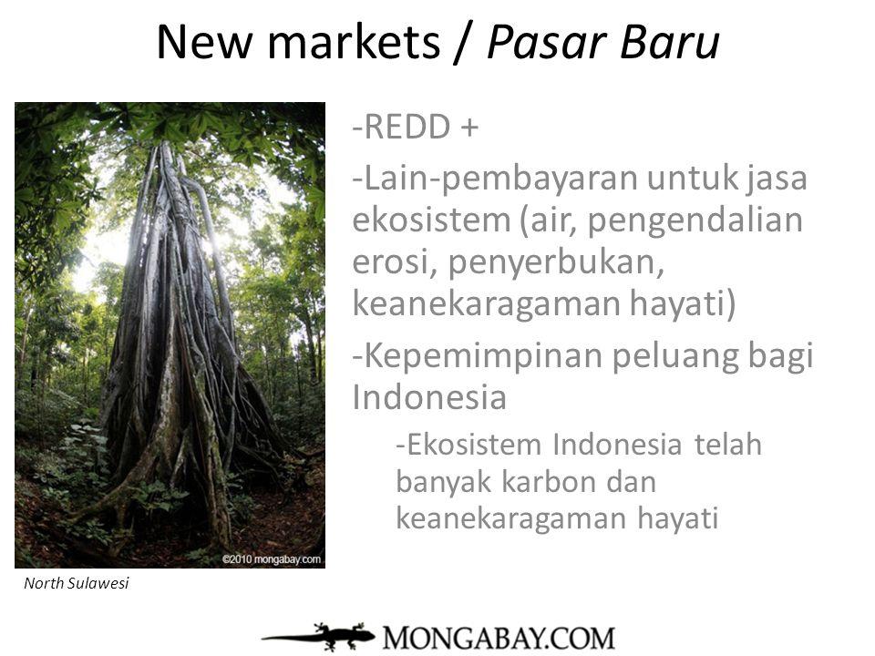New markets / Pasar Baru
