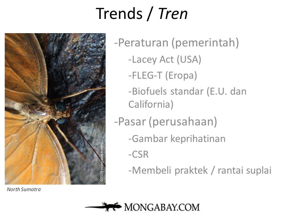 Trends / Tren Peraturan (pemerintah) Pasar (perusahaan)