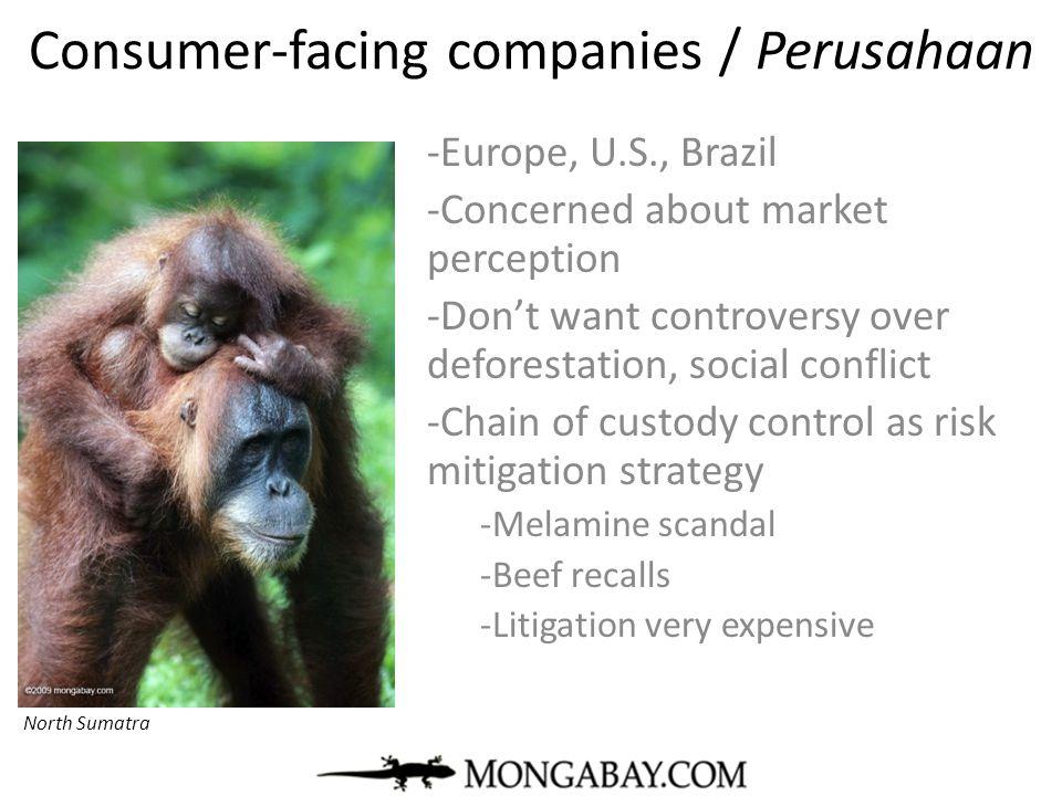 Consumer-facing companies / Perusahaan