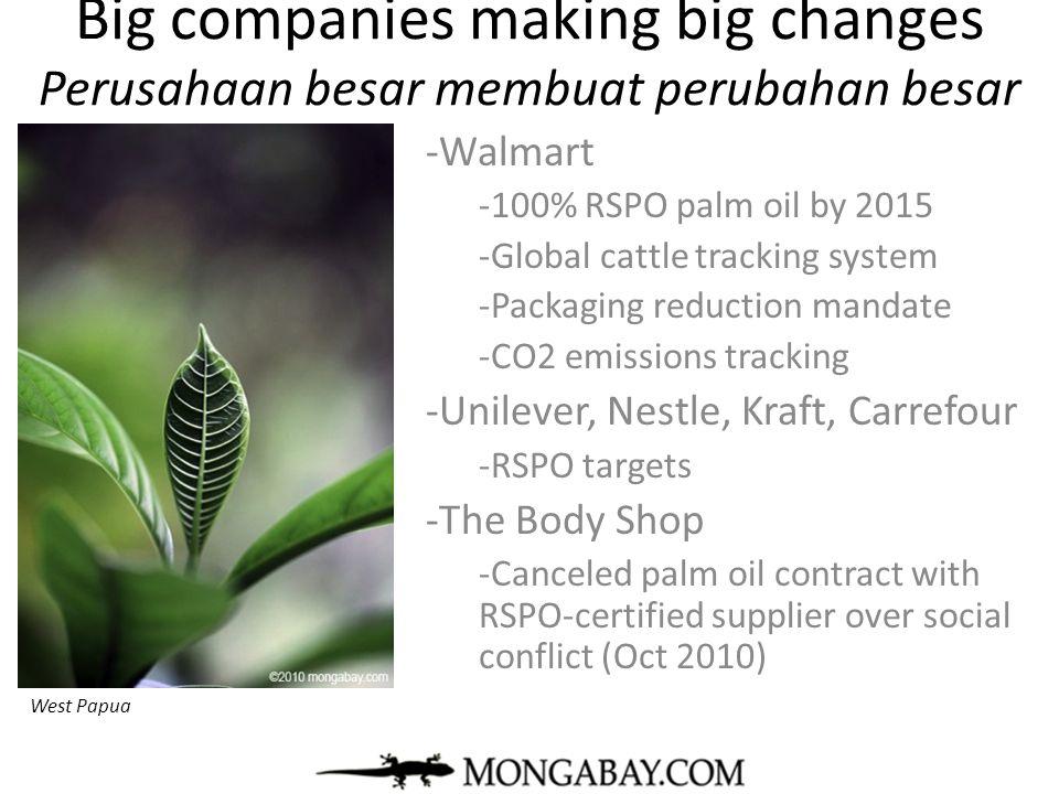 Big companies making big changes Perusahaan besar membuat perubahan besar