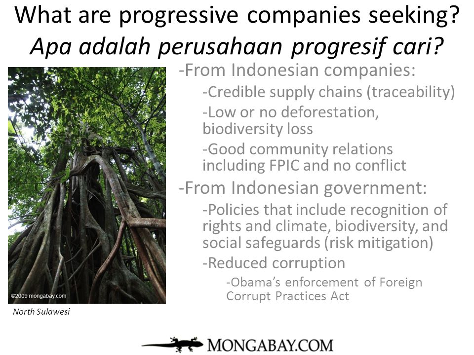 What are progressive companies seeking