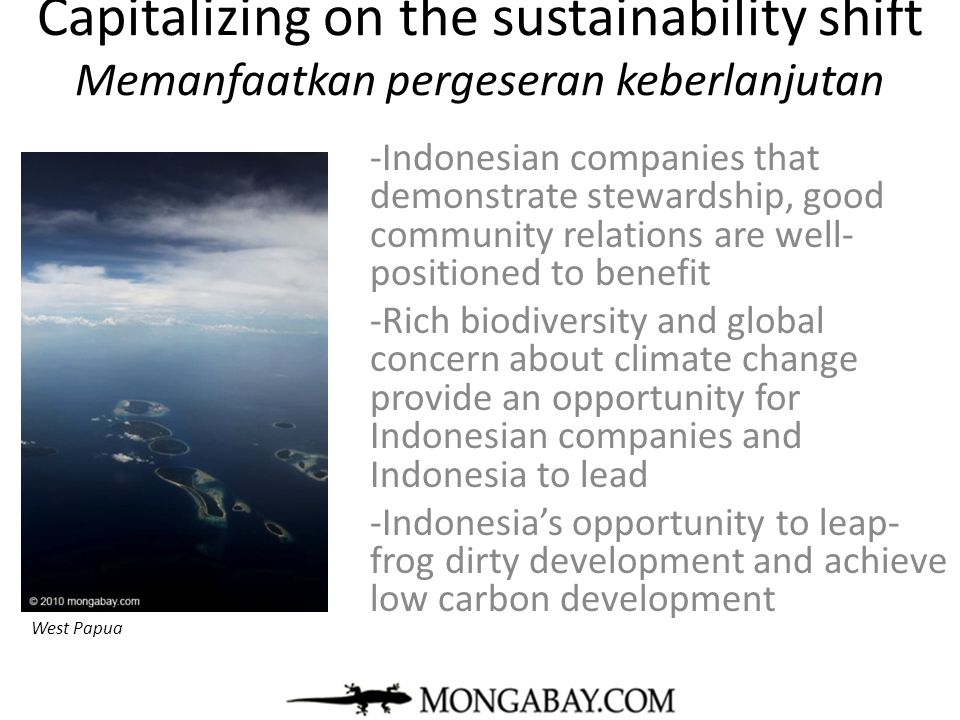 Capitalizing on the sustainability shift Memanfaatkan pergeseran keberlanjutan