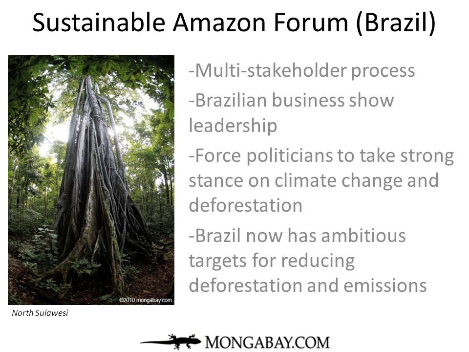 Sustainable Amazon Forum (Brazil)
