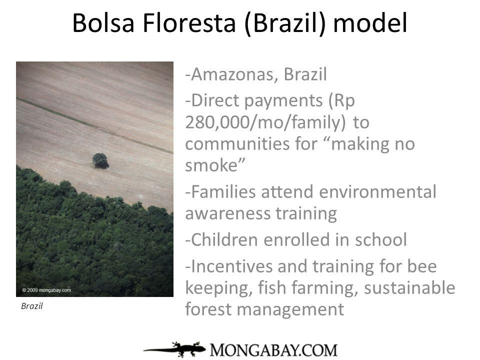 Bolsa Floresta (Brazil) model