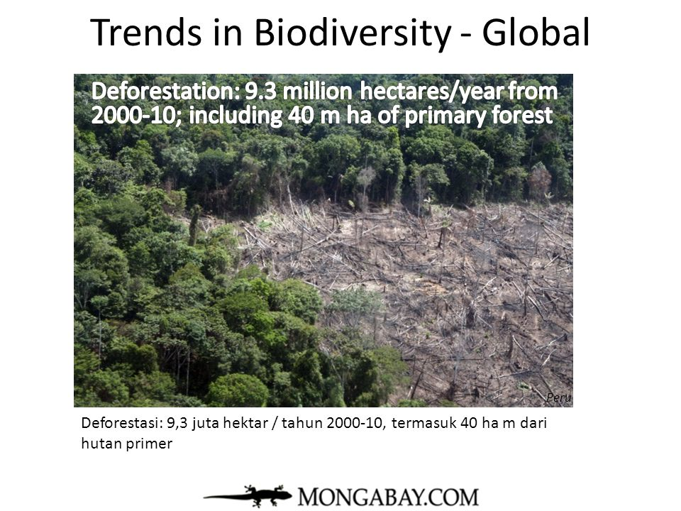 Trends in Biodiversity - Global