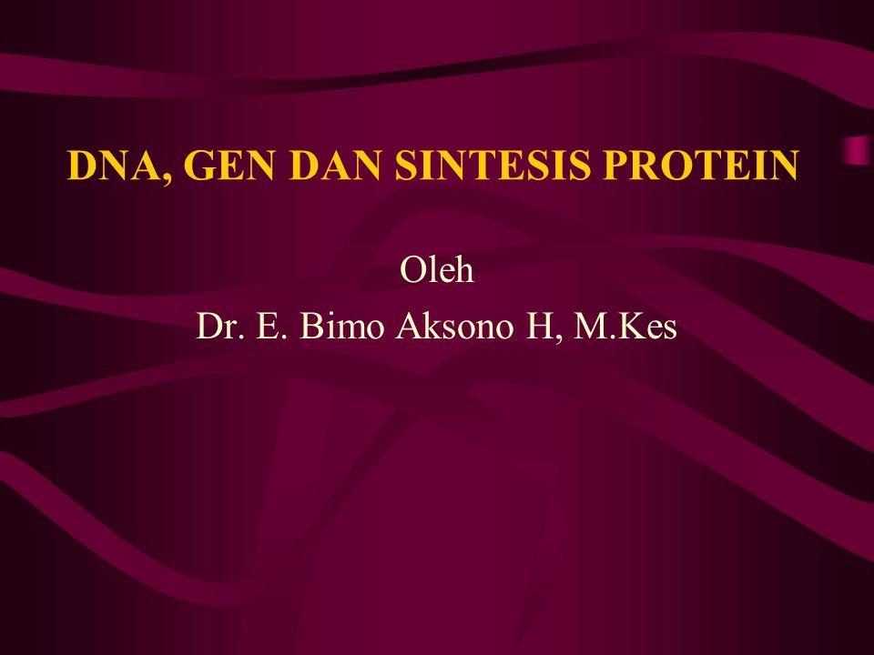 DNA, GEN DAN SINTESIS PROTEIN