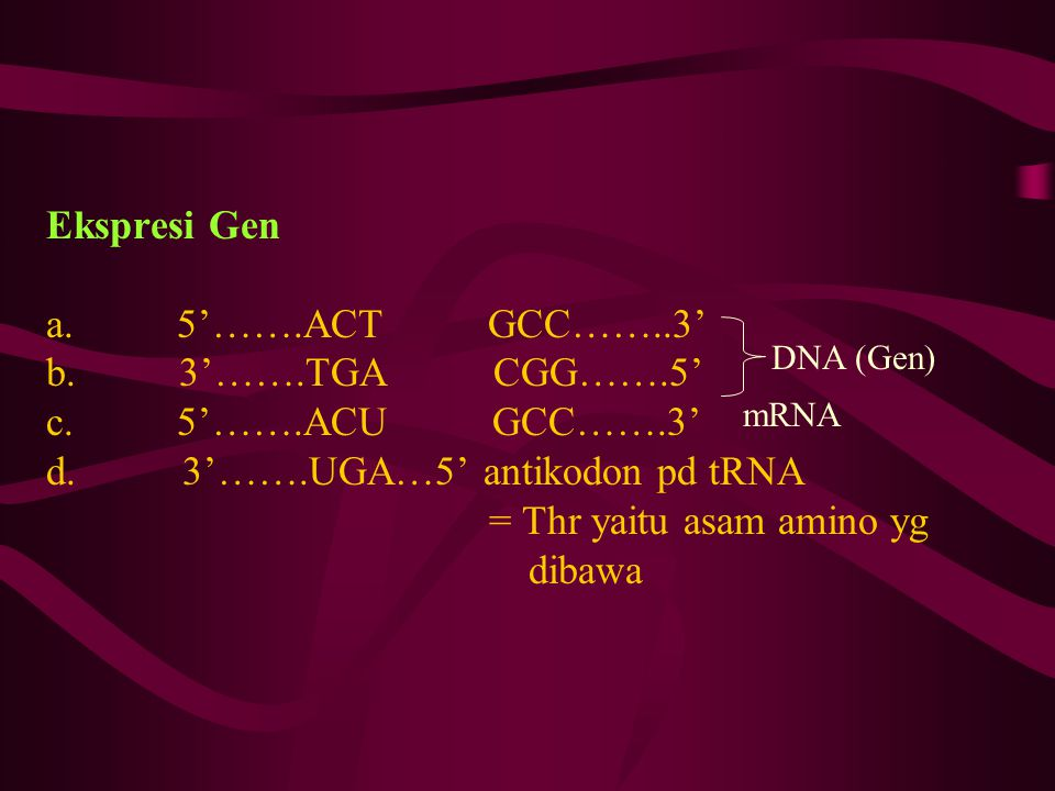 Ekspresi Gen a. 5'……. ACT GCC……. 3' b. 3'……. TGA CGG……. 5' c. 5'……