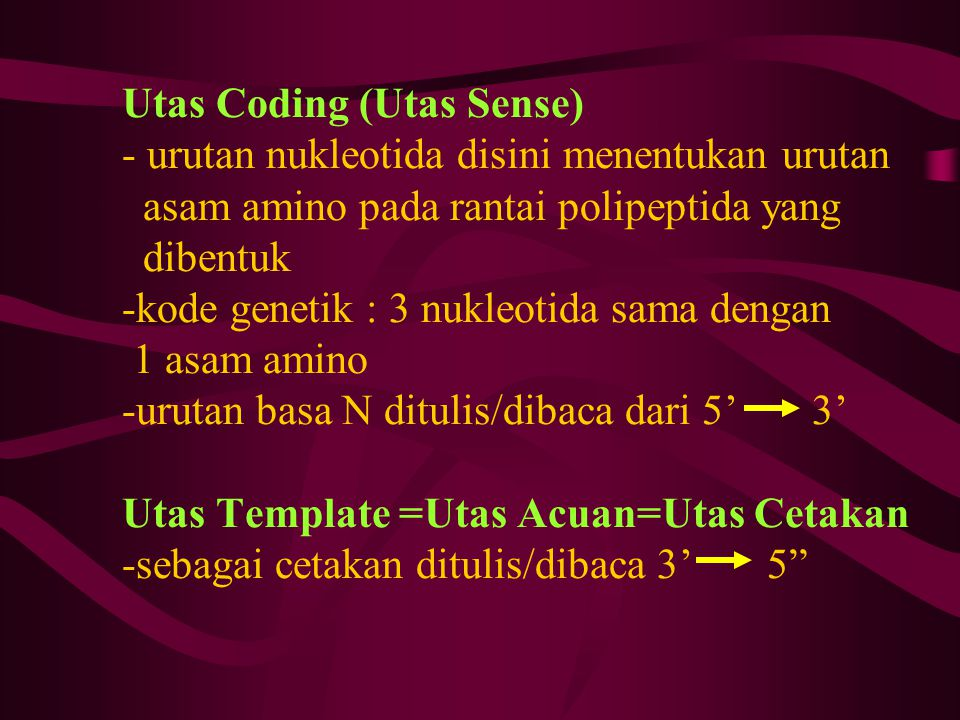 Utas Coding (Utas Sense) - urutan nukleotida disini menentukan urutan asam amino pada rantai polipeptida yang dibentuk -kode genetik : 3 nukleotida sama dengan 1 asam amino -urutan basa N ditulis/dibaca dari 5' 3' Utas Template =Utas Acuan=Utas Cetakan -sebagai cetakan ditulis/dibaca 3' 5