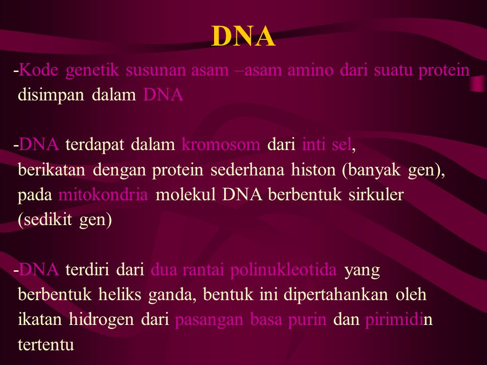 DNA -Kode genetik susunan asam –asam amino dari suatu protein