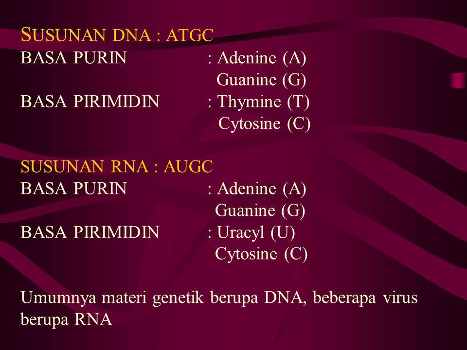 SUSUNAN DNA : ATGC BASA PURIN. : Adenine (A)