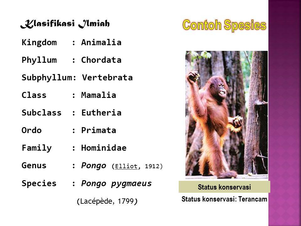 Status konservasi: Terancam