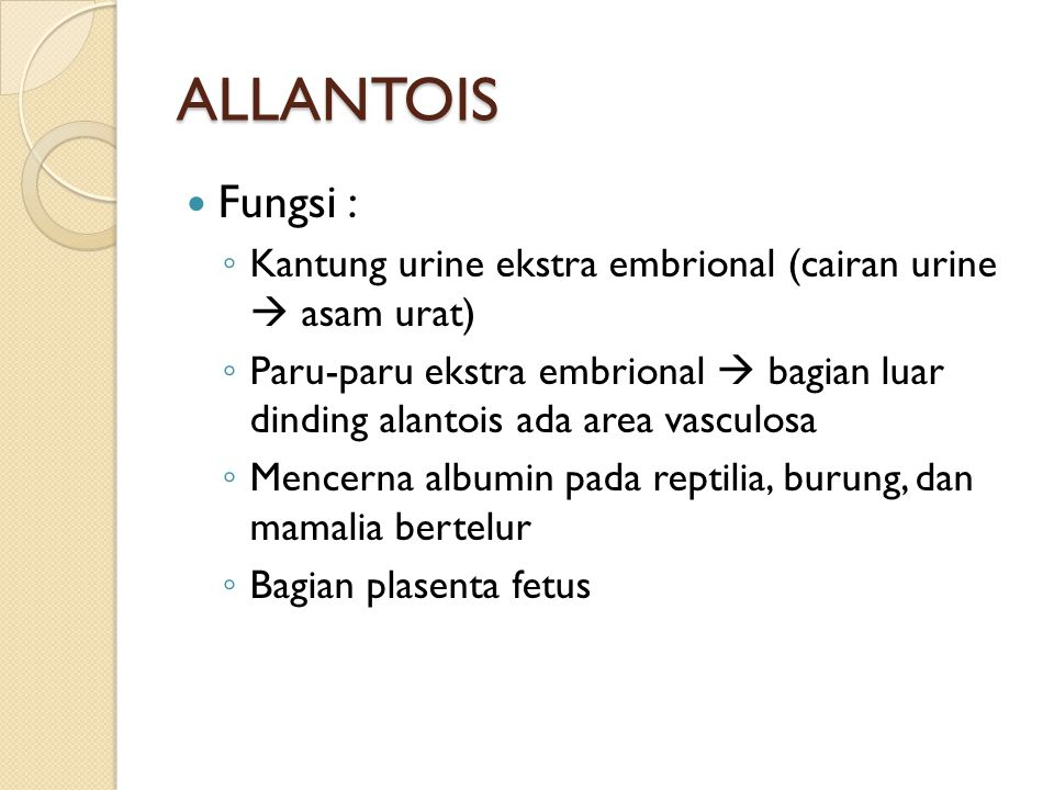 ALLANTOIS Fungsi : Kantung urine ekstra embrional (cairan urine  asam urat)