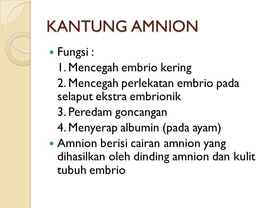 KANTUNG AMNION Fungsi : 1. Mencegah embrio kering