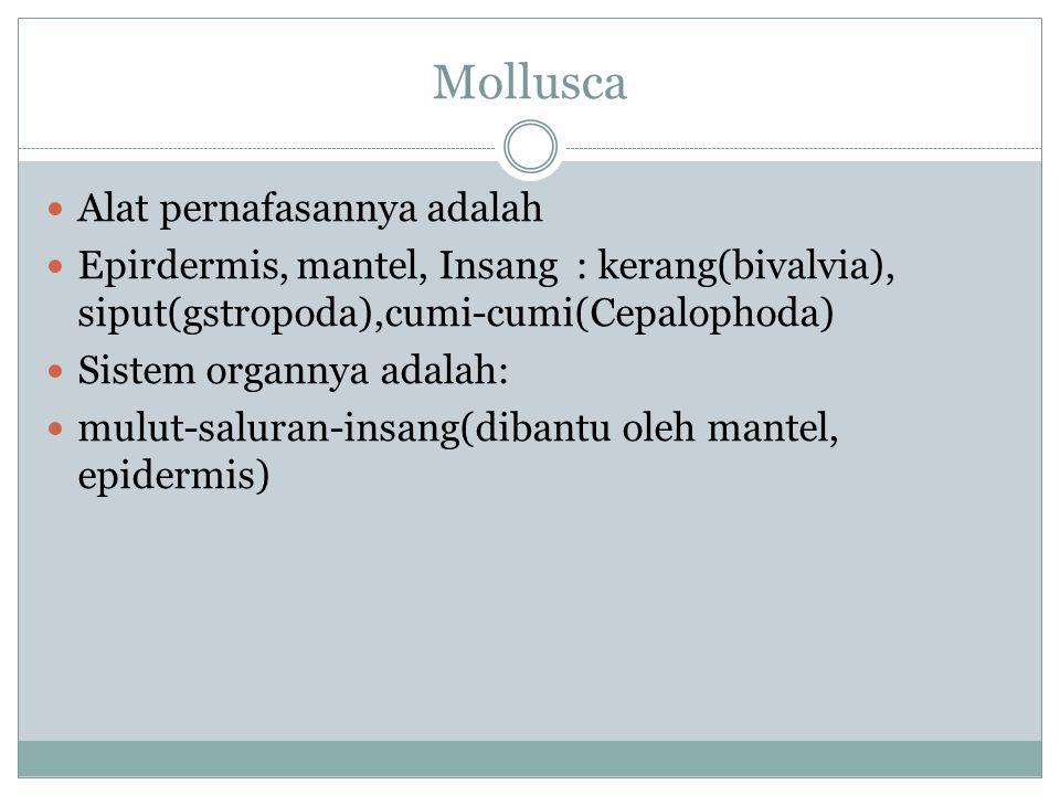 Mollusca Alat pernafasannya adalah