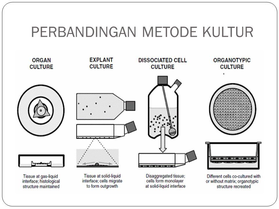 PERBANDINGAN METODE KULTUR