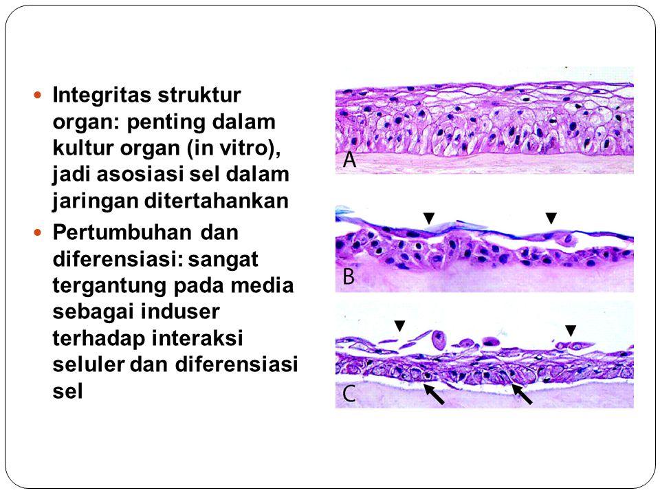 Integritas struktur organ: penting dalam kultur organ (in vitro), jadi asosiasi sel dalam jaringan ditertahankan