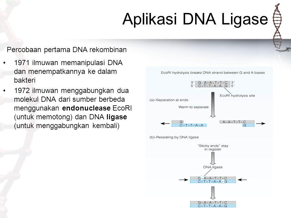 Percobaan pertama DNA rekombinan